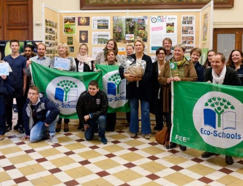 Le Label Eco-Schools comme récompense – Ecole n°16 Les Peupliers