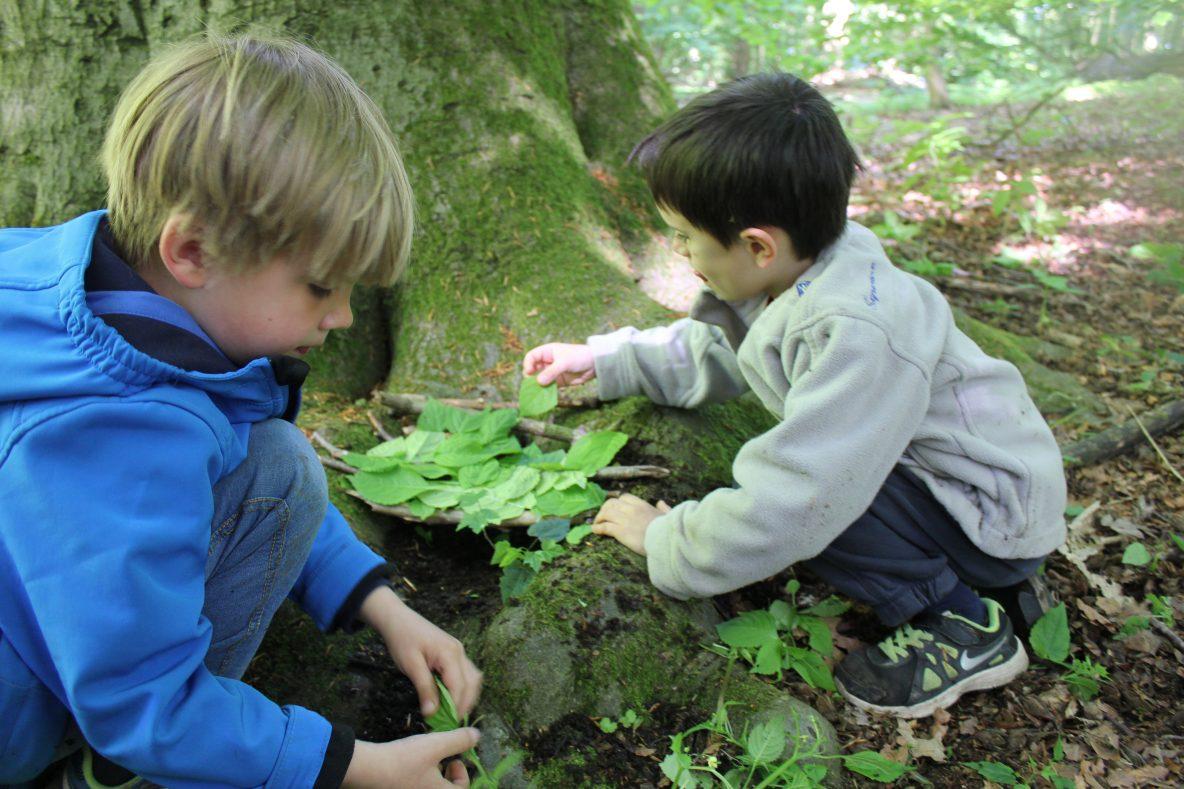 La nature, terrain de jeu et d'apprentissage – Ecole EOS