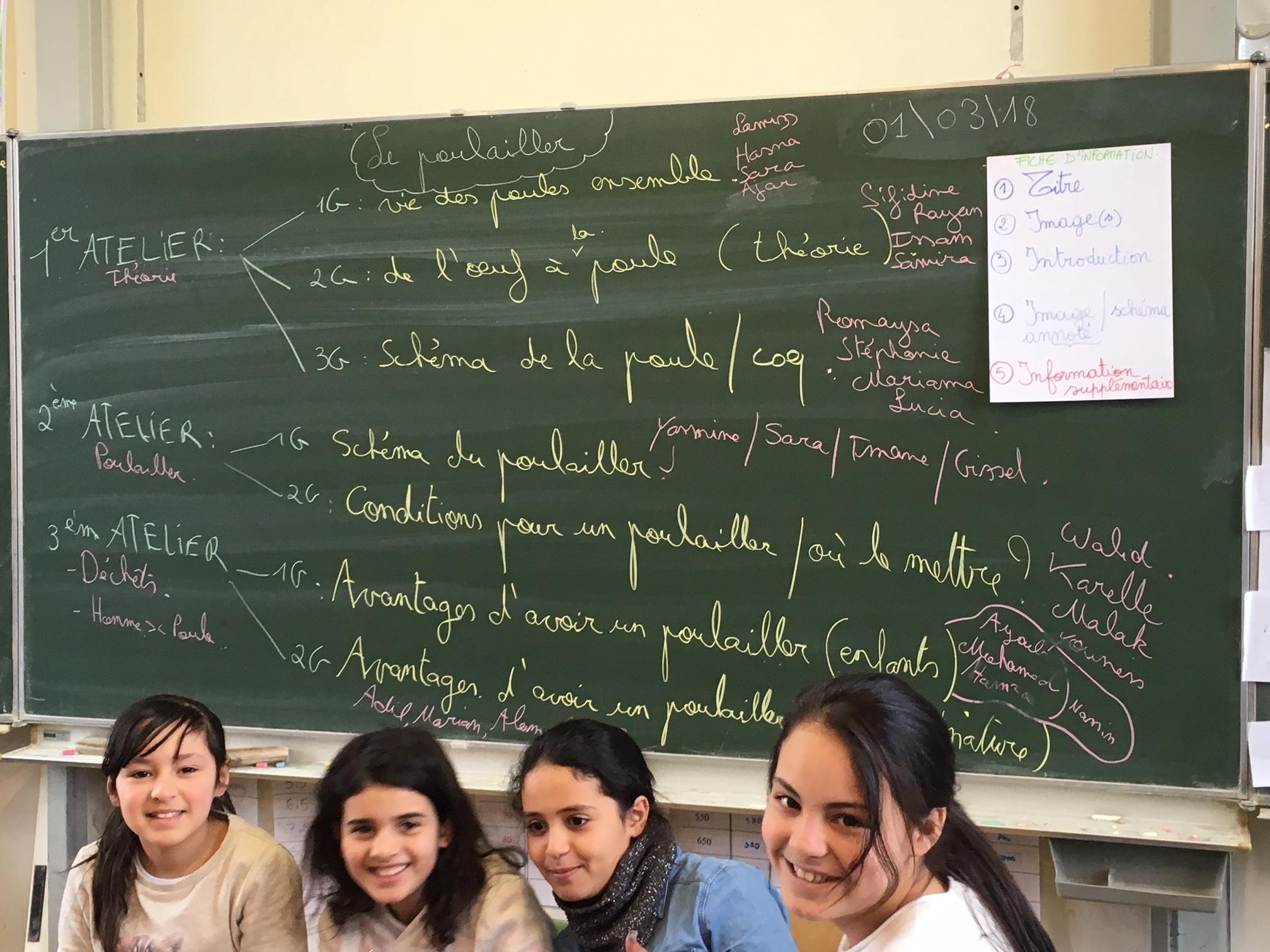 Kippen op school – Ecole Saint-Antoine